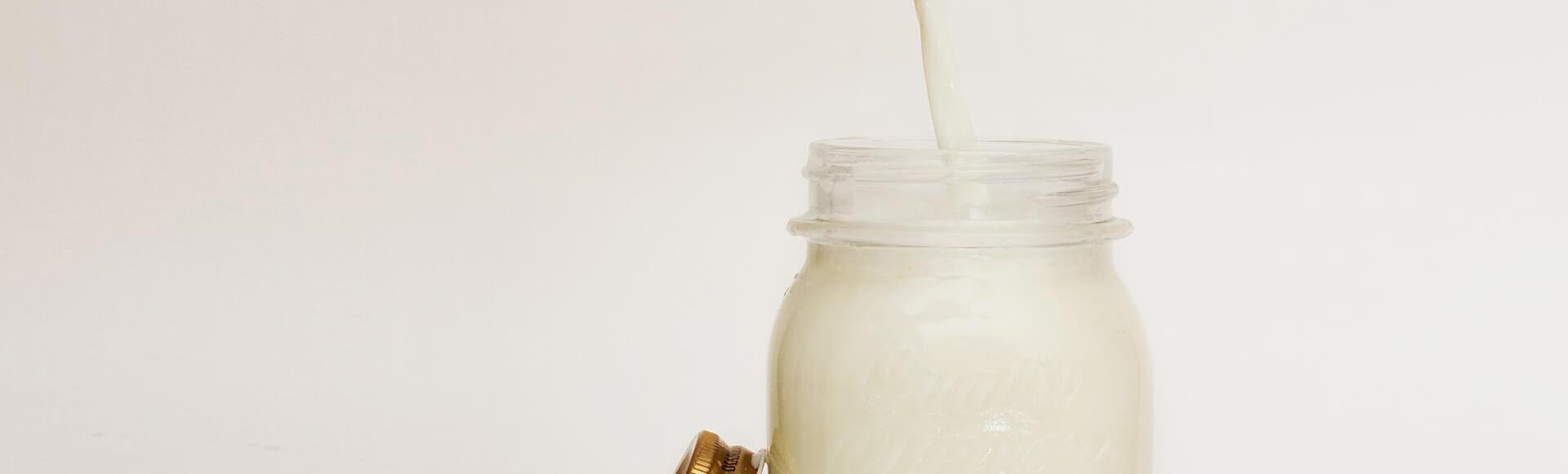 De la leche materna a la leche de vaca